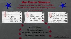 Mini Circuit Workout