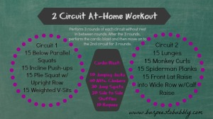 2 circuit at home workout