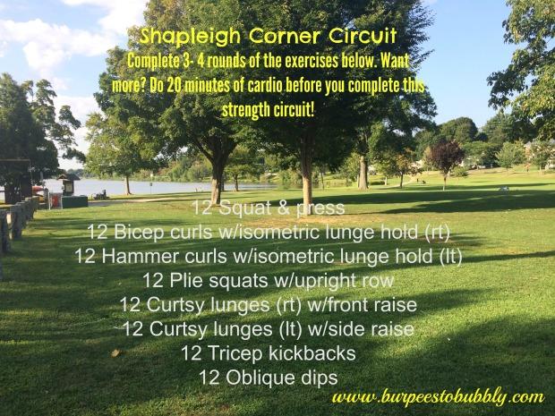 Shapleigh Corner Circuit