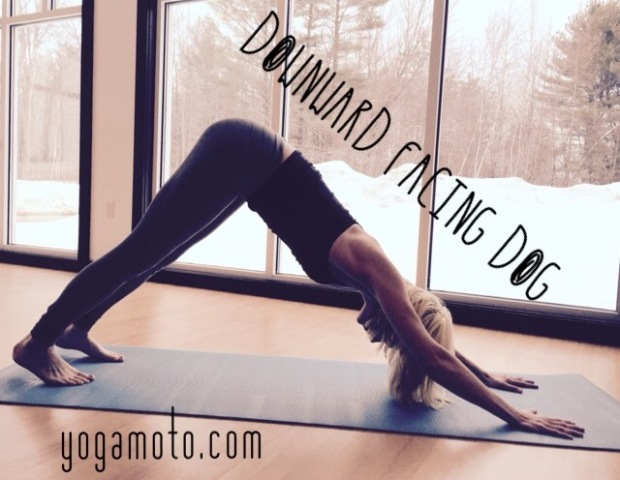 Malinda guest post Downward Facing Dog