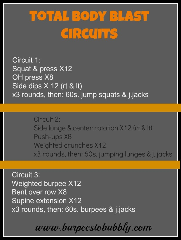Total body blast circuits